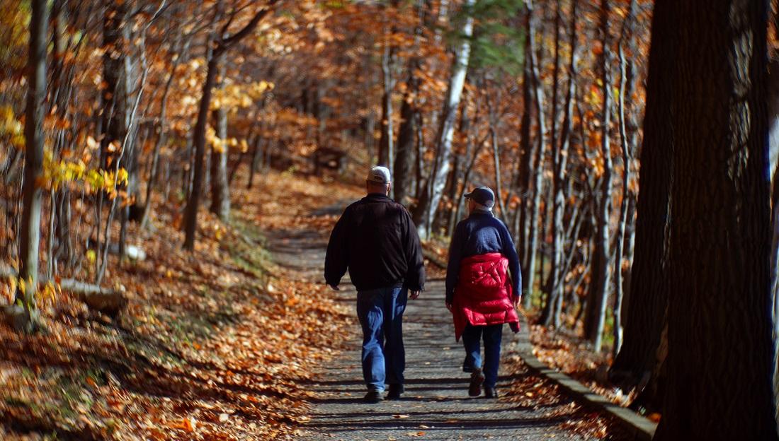 Pensjonister på tur i skogen