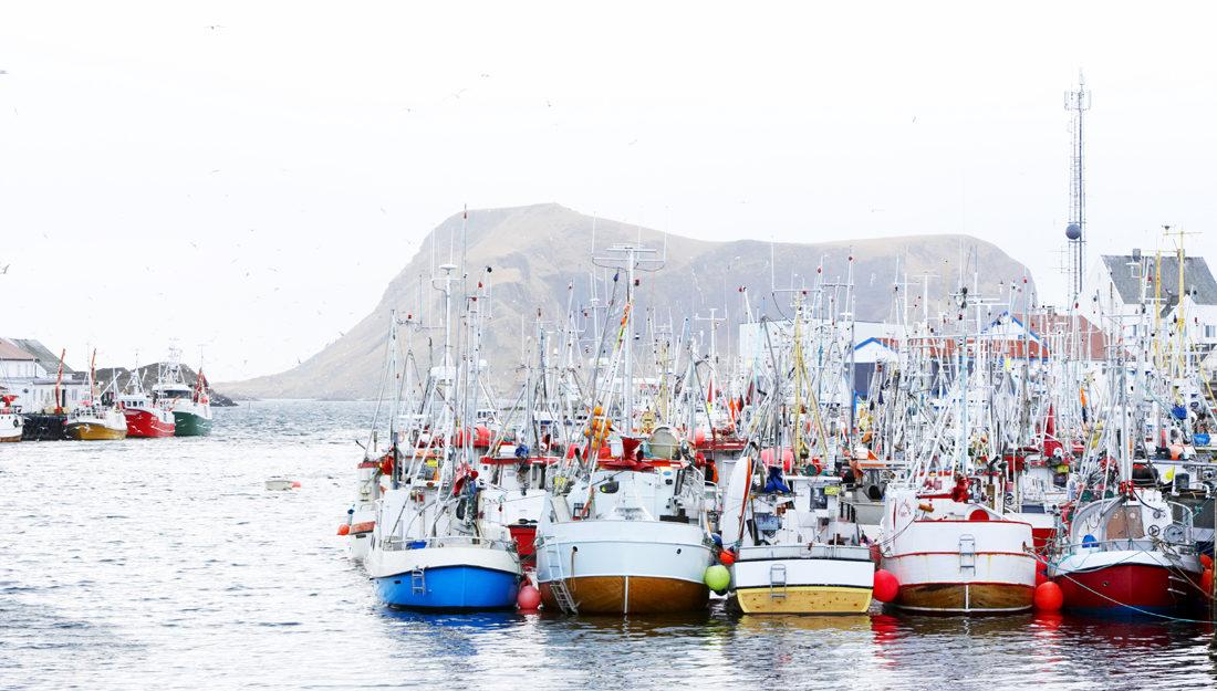havbruksnæringen